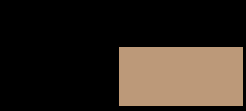 Schnitzelteller